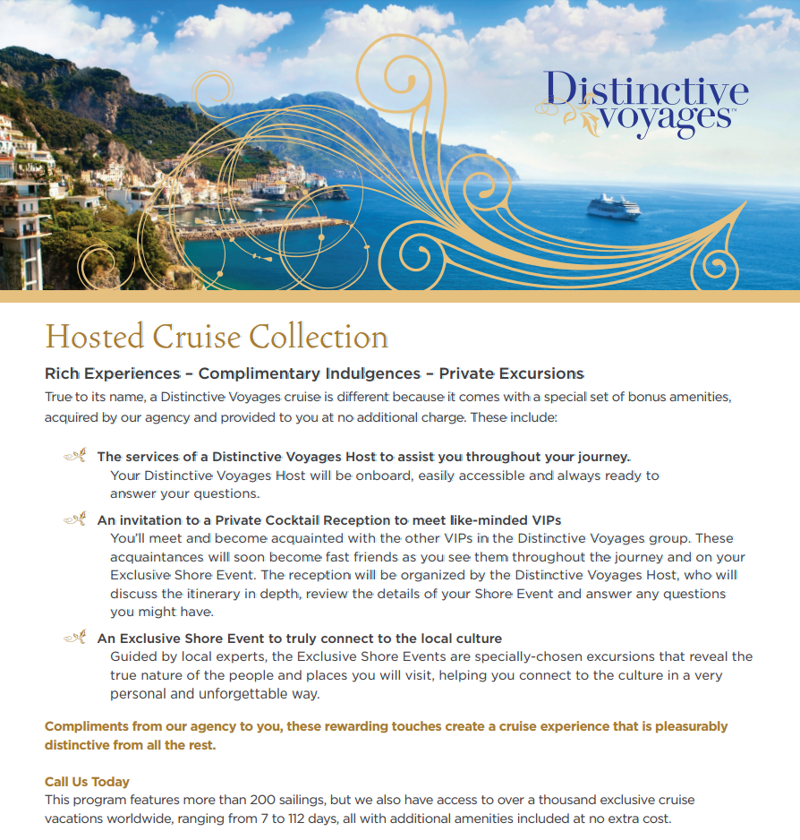 distinctive voyage flyer